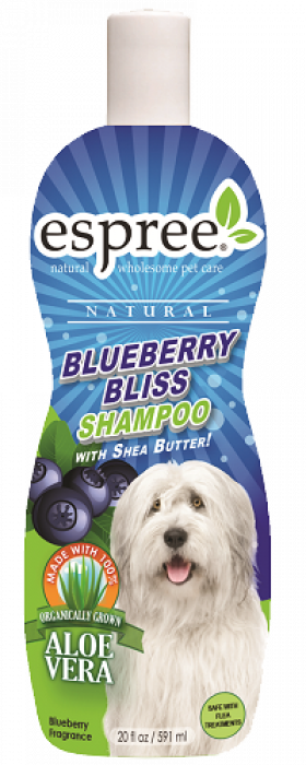 20oz-Blueberry-Bliss-Shampoo